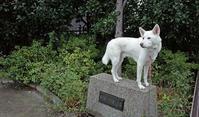 Vol.1174 仲手原一丁目第二公園 - 小太郎の白っぽい世界
