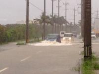 大雨の1日 - ブルちゃんのログ