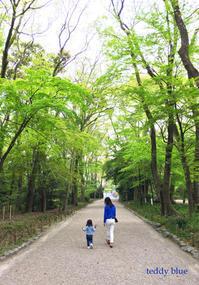 Kyoto trip  春の京都旅 洛中 - teddy blue