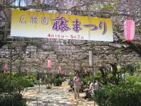 桜も終わり次に満開を迎える花々は……(^o^) - ケアホーム穂の香(ほのか)、ケアホームあや音(あやね)、デイサービス燈いろ(といろ)の日常