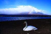 29年4月の富士(27) 虹かかる富士  - 富士への散歩道 ~撮影記~