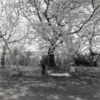 性懲りもなく #12 - Yoshi-A の写真の楽しみ