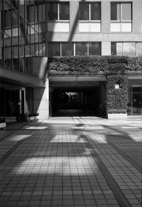 陽溜り - Picture In A Frame