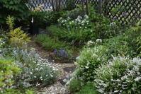 待ち遠しい5月の庭 - 緑のチョーカー