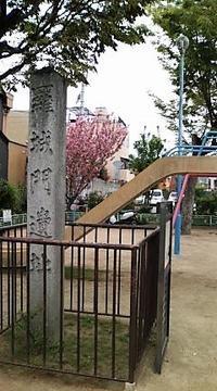 4月の弘法さんの市:東寺 - お休みの日は~お散歩行こう