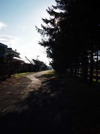 4月27日 今日の写真 - ainosatoブログ02