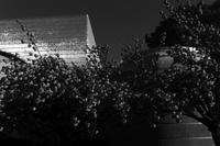 自然科学館の夕暮れに - Yoshi-A の写真の楽しみ