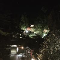 那谷寺 春の夜灯り ライトアップ 2017 - たっちゃん!ふり~すたいる?ふっとぼ~る。  フットサル 個人参加フットサル 石川県