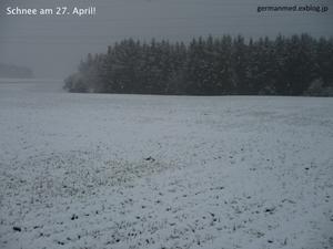 わが衣手に雪は降りつつ - 黒い森の白いくまさん