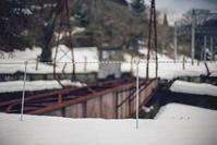 雪の中でもガードを緩めない律儀な虎ロープ - Film&Gasoline
