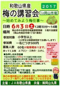 2017梅の講習会in岡山市場 参加者募集中! - 岡マルカちゃんのベジフル日記