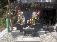 6年半目のお墓参り - 君の笑顔に逢いたい