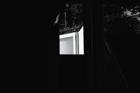 桜端月 寫誌 ⑱ my favorite exit - le fotografie di digit@l