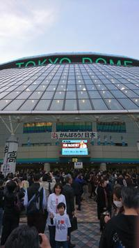 Paul McCartney Live in Tokyo Dome 2017.4.27 - 鴎庵