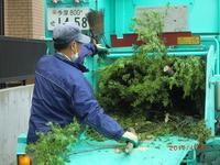 伐採した枝をチップに(調布市) ♪ - 良かった~探しの人生