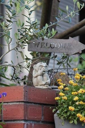 黄色のお花たち・・・♪ と小さなお客様🎶 - すきな ことに かこまれて