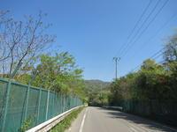 春爛漫のサイクリング(千丈寺湖〜千刈水源池) - 宝塚マドン