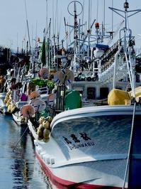 函館にて(10/20)・イカ釣り漁船 - 四十八茶百鼠