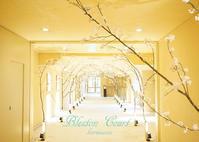 春爛漫 桜満開 ホテルブレストンコート♪ - きれいの瞬間~写真で伝えるstory~