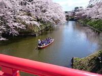 中濠観光舟:弘前公園*弘前さくらまつり - 津軽ジェンヌのcafe日記