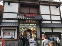 (台東名所)浅草花やしき / Asakusa Hanayashiki - Macと日本酒とGISのブログ
