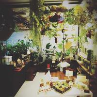 頭上注意‼ - 花屋のブログ 心 世界~NEW WORLD~