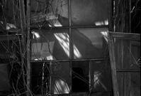 沈胴ズミクロン - Picture In A Frame