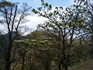 英彦山と日田の山へ。 - そうだ!山に登ろう