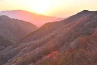 山微笑む  木梶山 - 峰さんの山あるき