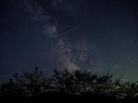 葉桜銀河 - デジタルで見ていた風景