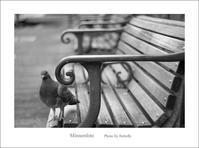領域 - Minnenfoto