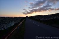富山散歩~県東部386~4月の朝、白い絨毯 - Tomの一人旅~気のむくまま、足のむくまま~