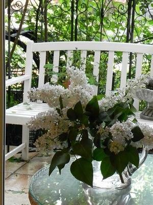 陶芸教室の日&庭の様子 - 心とカラダが元気になるアロマ&ハーブガーデン教室chant rose