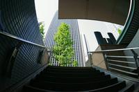 フィッシュアイで新宿西口! - 柳に雪折れなし!Ⅱ