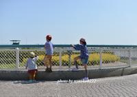 ぽかぽか陽気の日曜日 - nyaokoさんちの家族時間