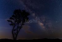 再び屏風岩へ - toshi の ならはまほろば