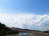 相模川の風景 - 水の国の風景