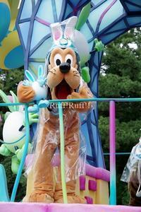[写真のみ]うさたま大脱走 キャングリ - Ruff!Ruff!! -Pluto☆Love-