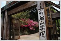 佐賀・御船山楽園の躑躅 - ■MAGの写真創庫■