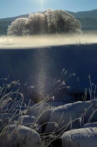 氷点下19℃の朝 - daistarの自己マンライフ