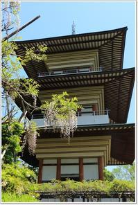 香山寺からの眺め  - ハチミツの海を渡る風の音