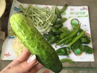 GW北京2日目(^^) 野菜いっぱいの食卓 - おはけねこ 外国探訪