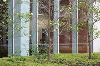 足立区の散歩 231 - 一場の写真 / 足立区リフォーム館・頑張る会社ブログ