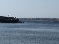 三浦半島へ行ってきました♪ - 自然と遊楽