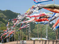 五月〜鯉のぼり - この道は風なり