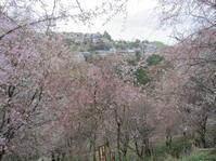 花の吉野の別れ歌 - 地図を楽しむ・古代史の謎