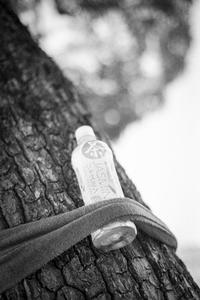2017年5月2日 ジャスミン茶を抱きしめる街路樹 - Silver Oblivion