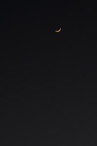 ☆ 上弦の月 ☆ - ON ANY SUNDAY 2.............