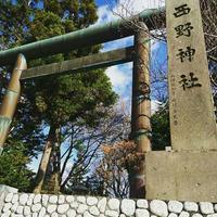参拝日和 - 札幌市南区石山  漢方・自然療法教室 Noya のや