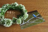 シロツメクサの冠 【動画あり】 - yamatoのひとりごと